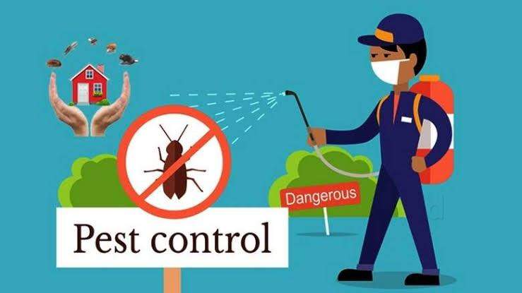 How to find best Pest control services Abu Dhabi ?? All you need to be is good at comparisons